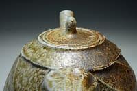 Wood salt fired teapot with cut sided and heavy salt glazed surface.