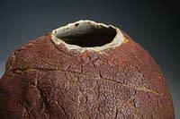 International gallery level piece. superb texture surface vase.